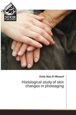 Histological study of skin changes in photoaging