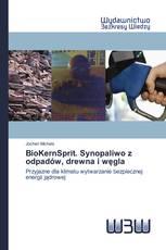 BioKernSprit. Synopaliwo z odpadów, drewna i węgla