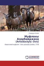 Муфлоны Азербайджана (Artiodactyla: Ovis)