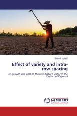 Effect of variety and intra-row spacing