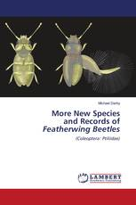 More New Species and Records of Featherwing Beetles