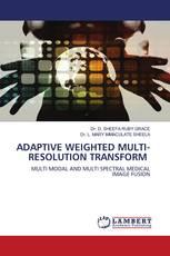 ADAPTIVE WEIGHTED MULTI-RESOLUTION TRANSFORM