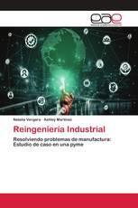 Reingeniería Industrial