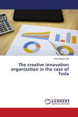 The creative innovation organization in the case of Tesla
