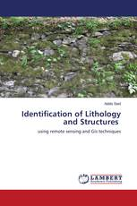 Identification of Lithology and Structures