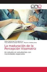 La maduración de la Percepción Visomotriz