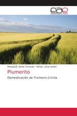 Plumerito
