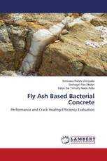 Fly Ash Based Bacterial Concrete