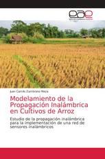 Modelamiento de la Propagación Inalámbrica en Cultivos de Arroz