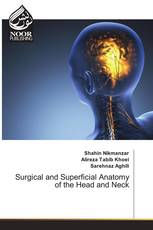 Surgical and Superficial Anatomy of the Head and Neck