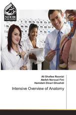 Intensive Overview of Anatomy