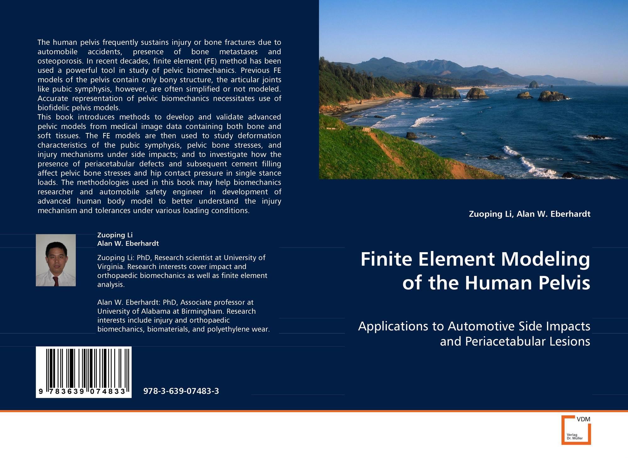 Finite element modeling of the human pelvis 978 3 639 for Finite elemente modell