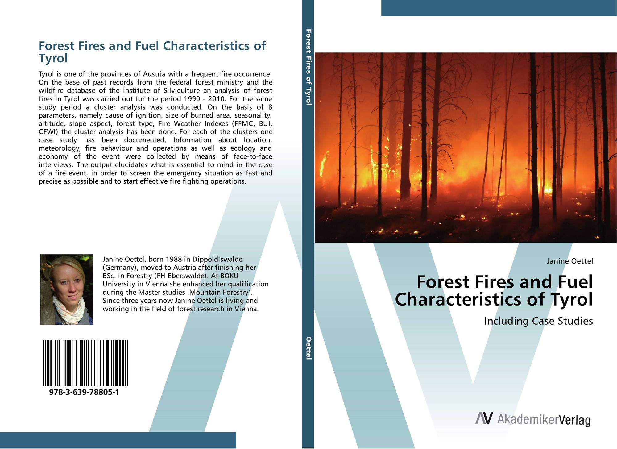 an analysis of the case of a forest fire Forest fire analysis and classification based on a serbian case study forest fire analysis and classification based on a serbian case study doi: .