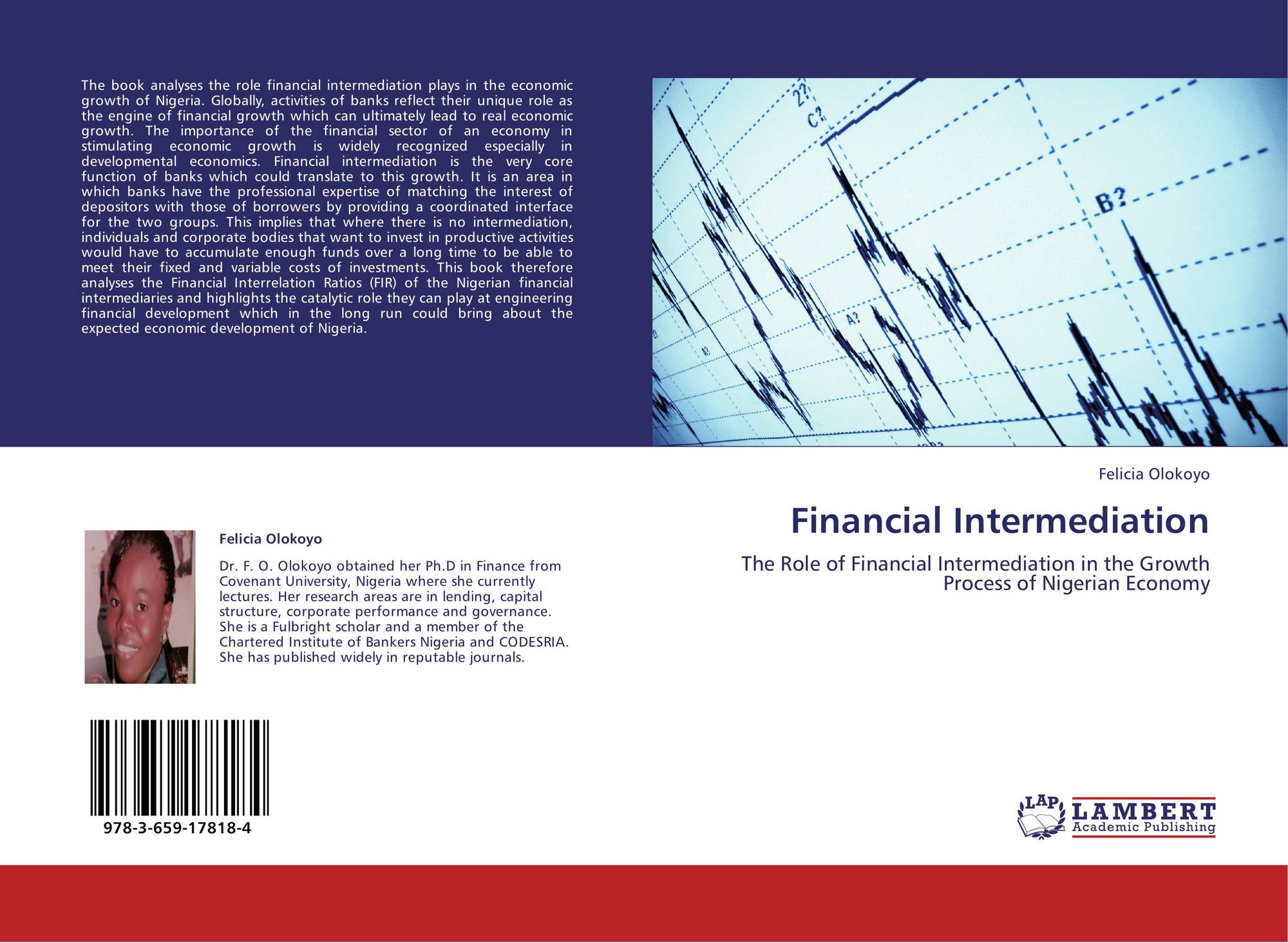 literature review financial analysis , literature review of an important technique to 2015 review: a review of financial performance of ratio analysis looks at al 2012 financial performanceliterature reviewfriedman a no.