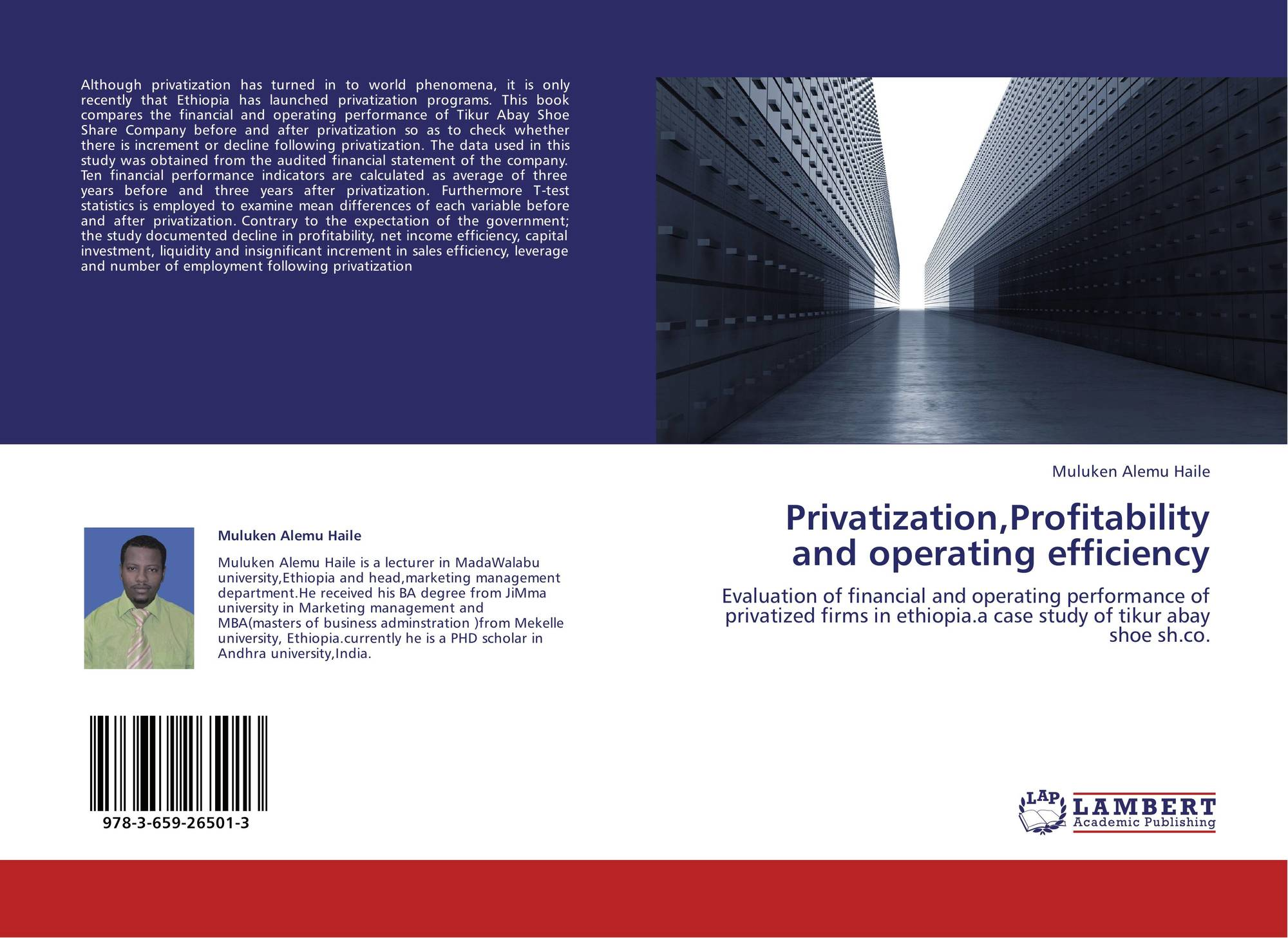 a study of privatization The study focuses on the industrial and trade public enterprises (pe's) organized under law 203, since privatization activities in the 1990's to date have largely addressed these enterprises.