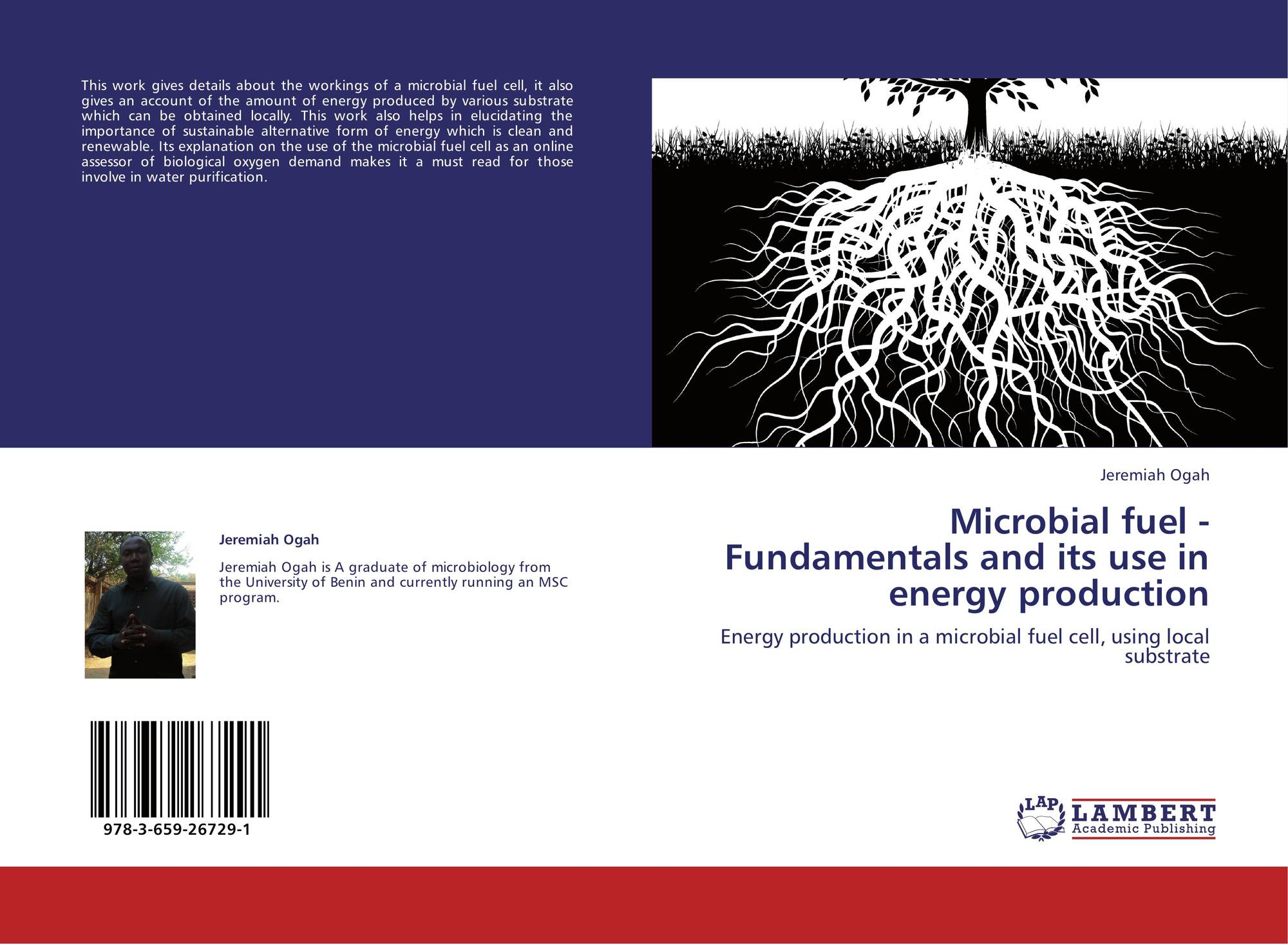 efficient energy harvester for microbial fuel A microbial fuel cell (mfc), or biological fuel cell, is a bio-electrochemical system that drives an electric current by using bacteria and mimicking bacterial interactions found in nature mfcs can be grouped into two general categories: mediated and unmediated.
