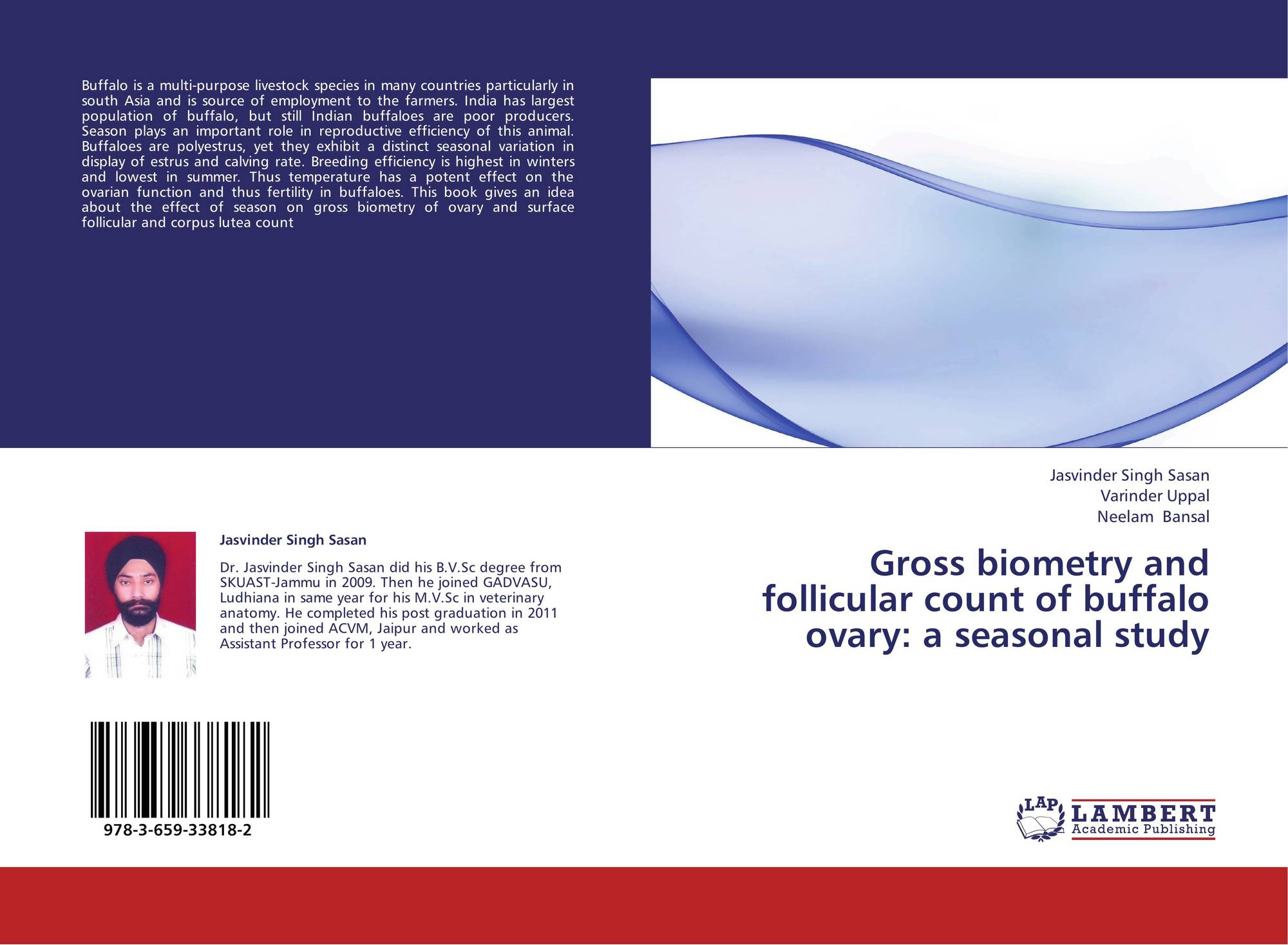 Follicular monitoring | Radiology Reference Article ...