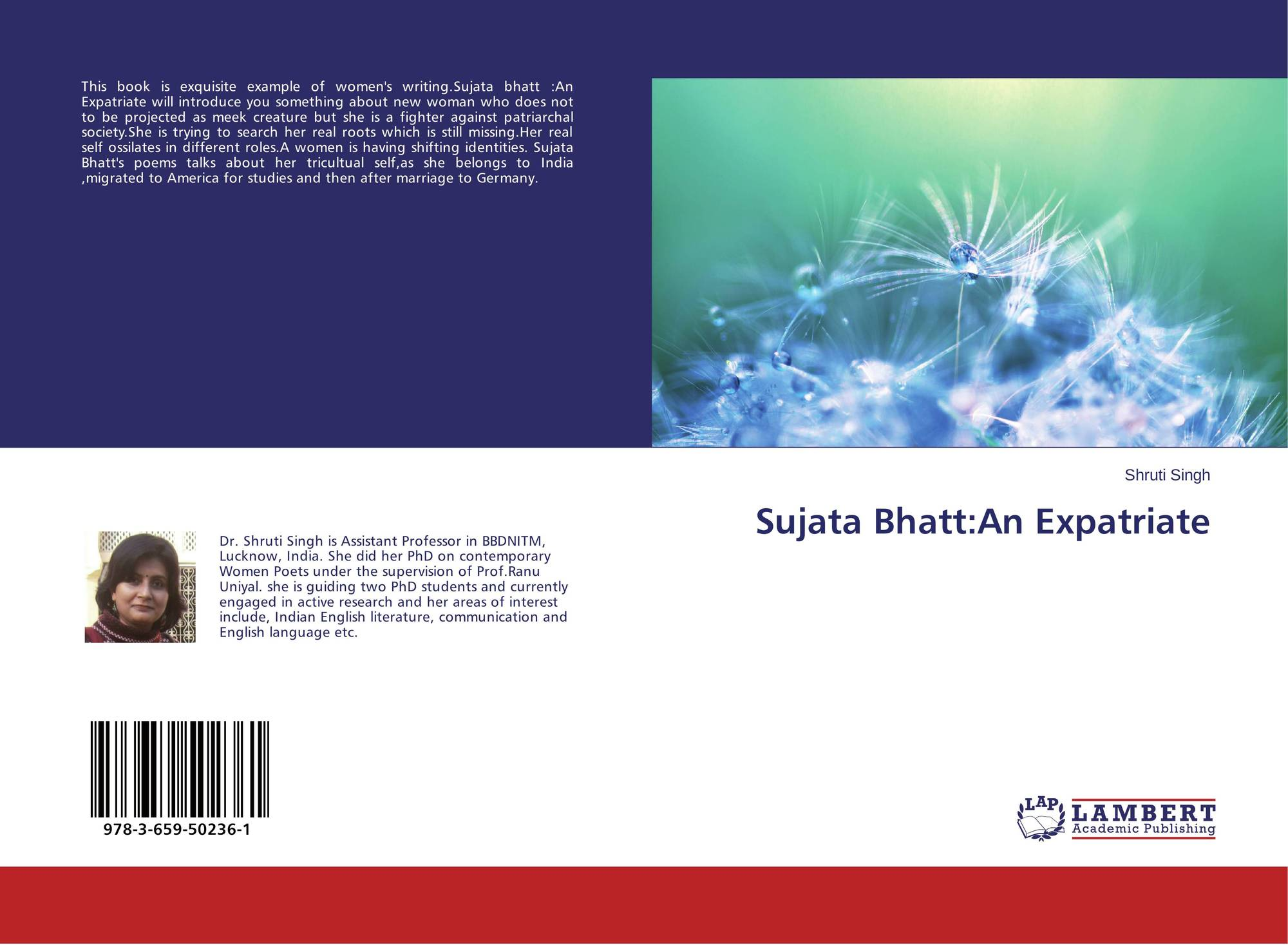 sujata bhatt different history summary An annotated presentation on sujata bhatt's 'a different history' with accompanying worksheets for students to use to develop their understanding of the poem.