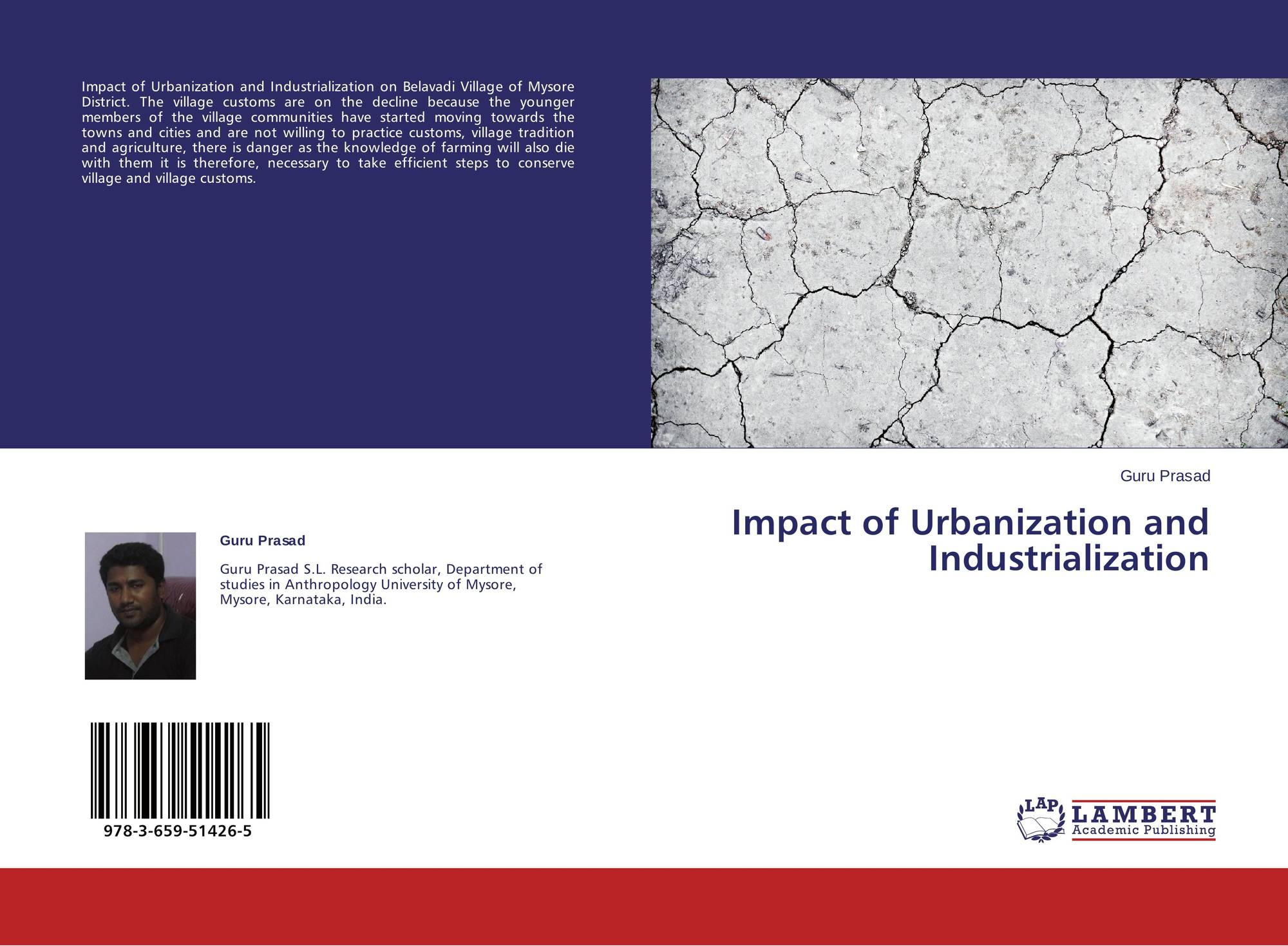 impact of urbanisation