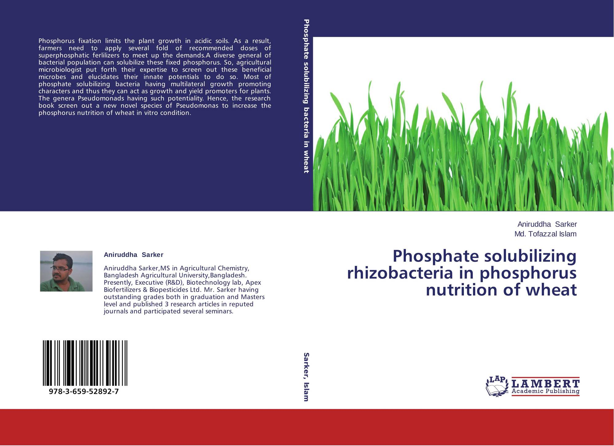thesis on plant growth promoting rhizobacteria Effects of plant growth promoting rhizobacteria (pgpr) inoculum on indigenous microbial community structure under cropping system suranaree university of technology has approved this thesis submitted in.