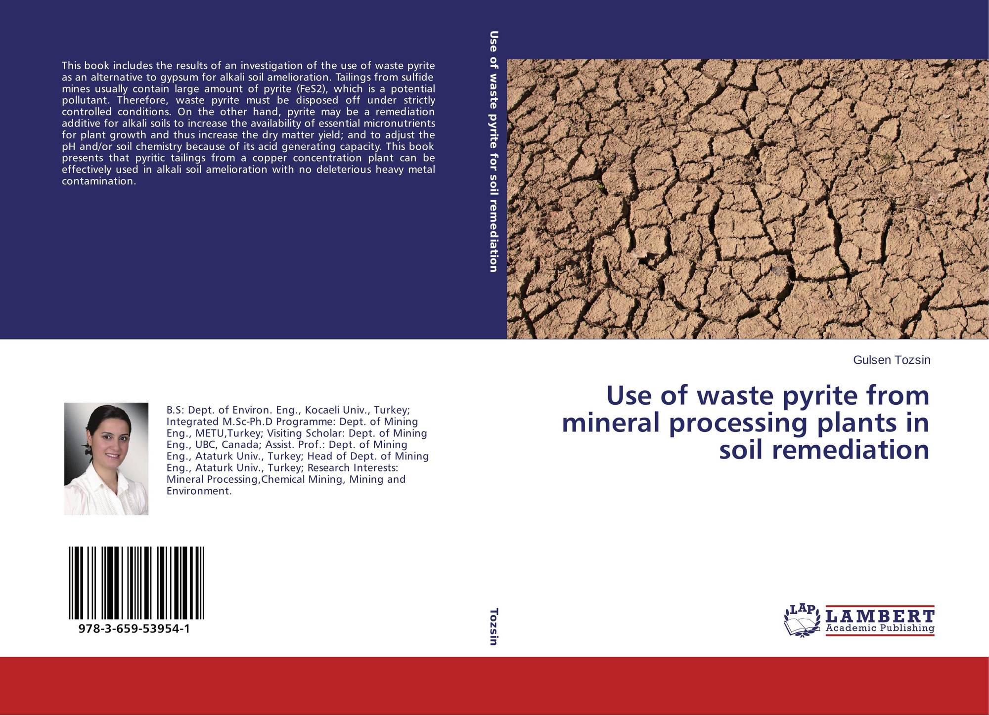 Use of waste pyrite from mineral processing plants in soil for Uses of soil in english