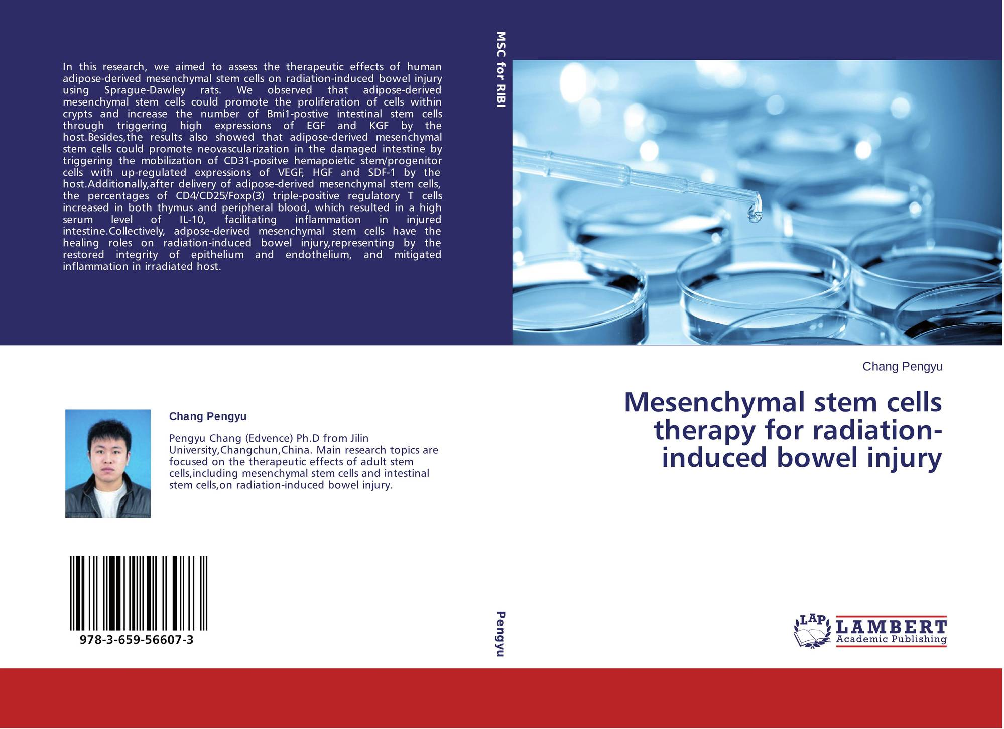 Multilineage potential of adult human mesenchymal stem  erotic tube