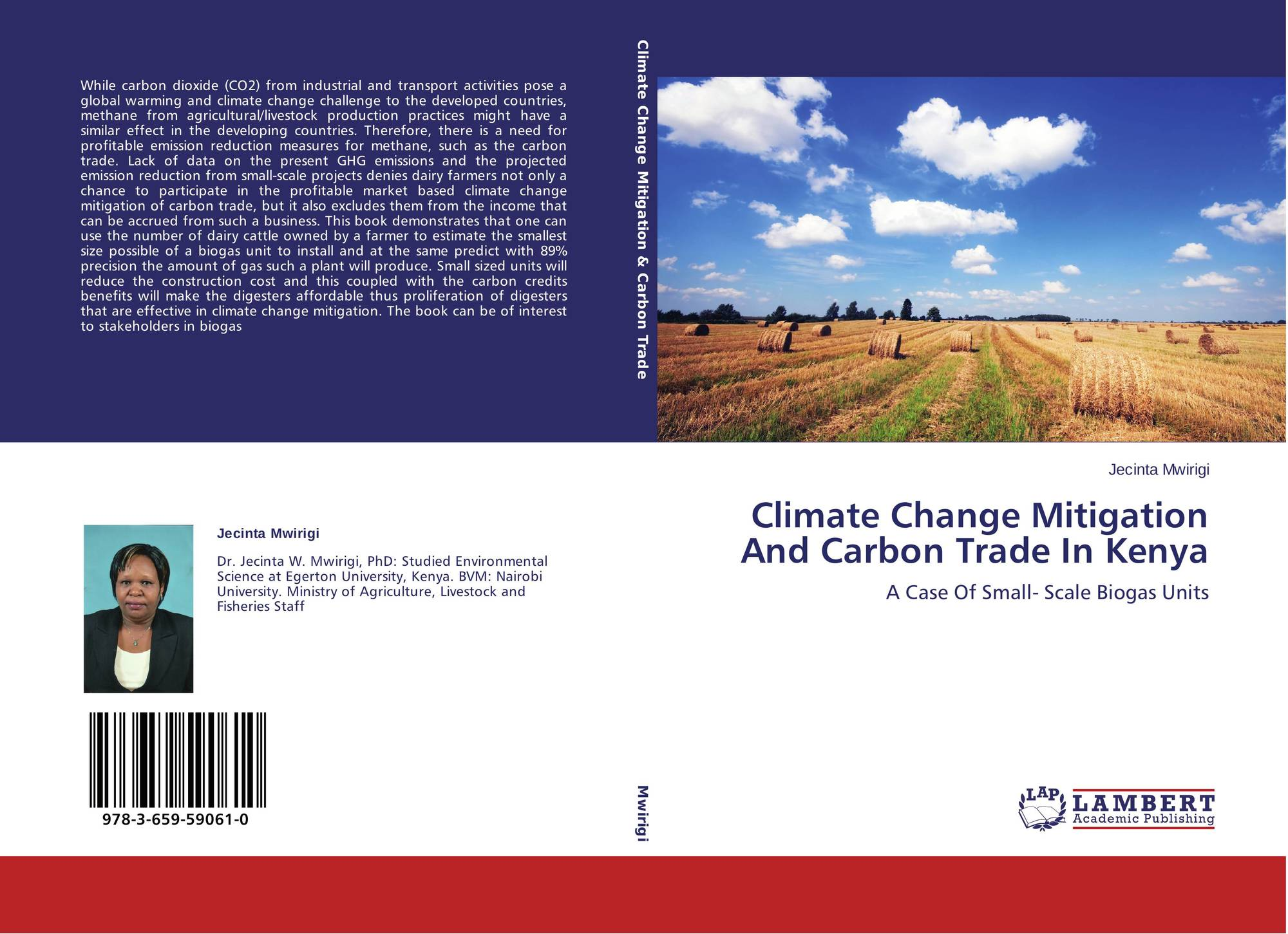 changes in trade in mesoamerica and The peoples and civilizations of the americas changes in climate with the ending of the last ice age mesoamerica (veracruz and.