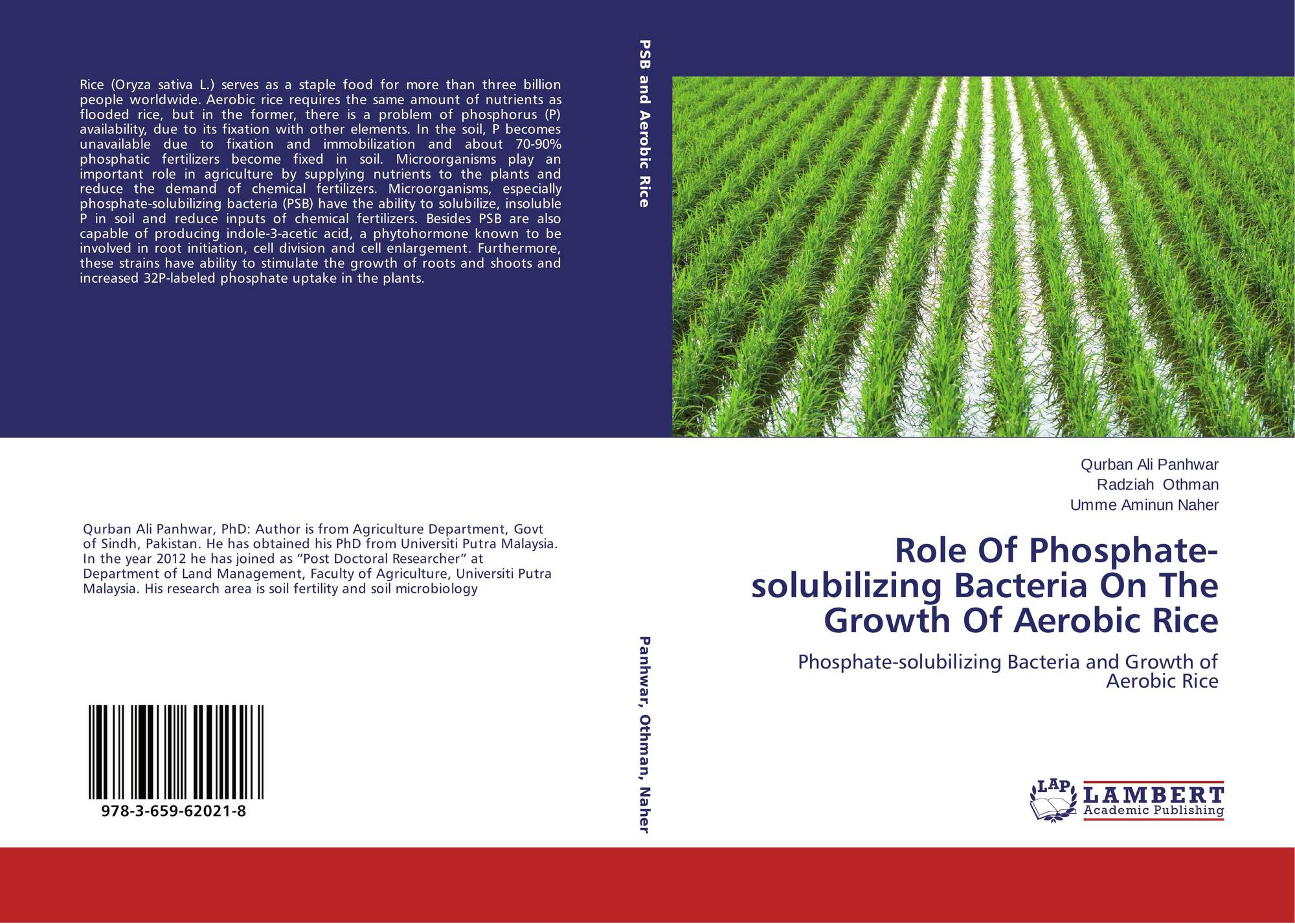 thesis on phosphate solubilizing bacteria 819 journal of soil science and plant nutrition, 2014, 14 (4), 819-831 research article inoculation of maize with phosphate solubilizing bacteria: effect on.