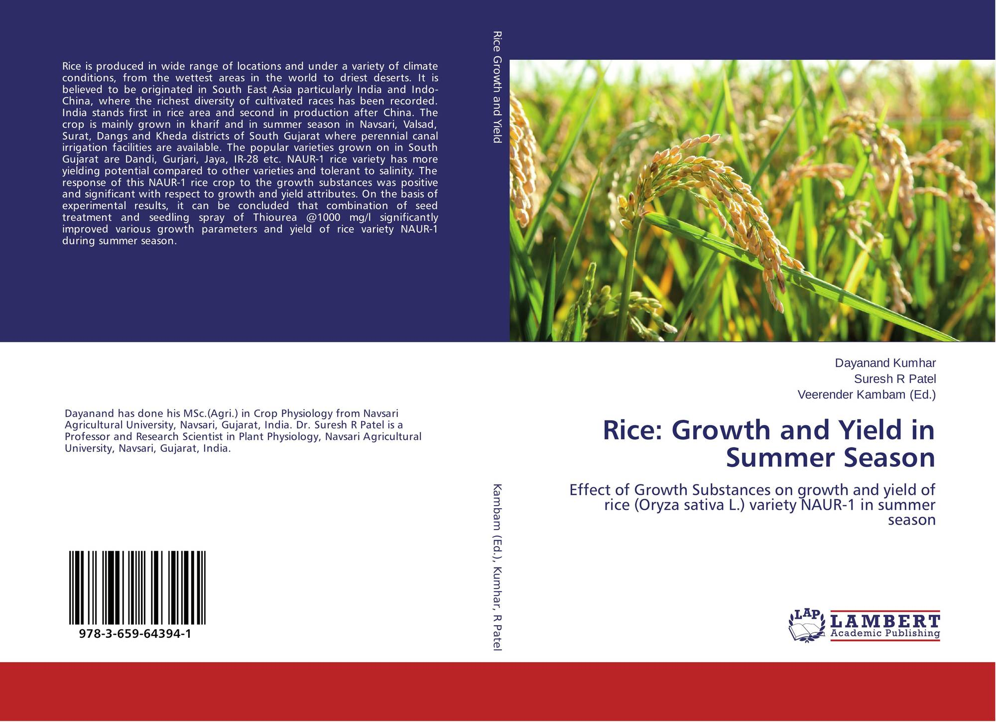 influence of rhizobium on the growth and yield of rice A strain of rhizobium isolated from moong bean increased the yield of paddy cv pusa-33 on the other hand an adverse effect of bacterial inoculation and of applied n was observed in case of.