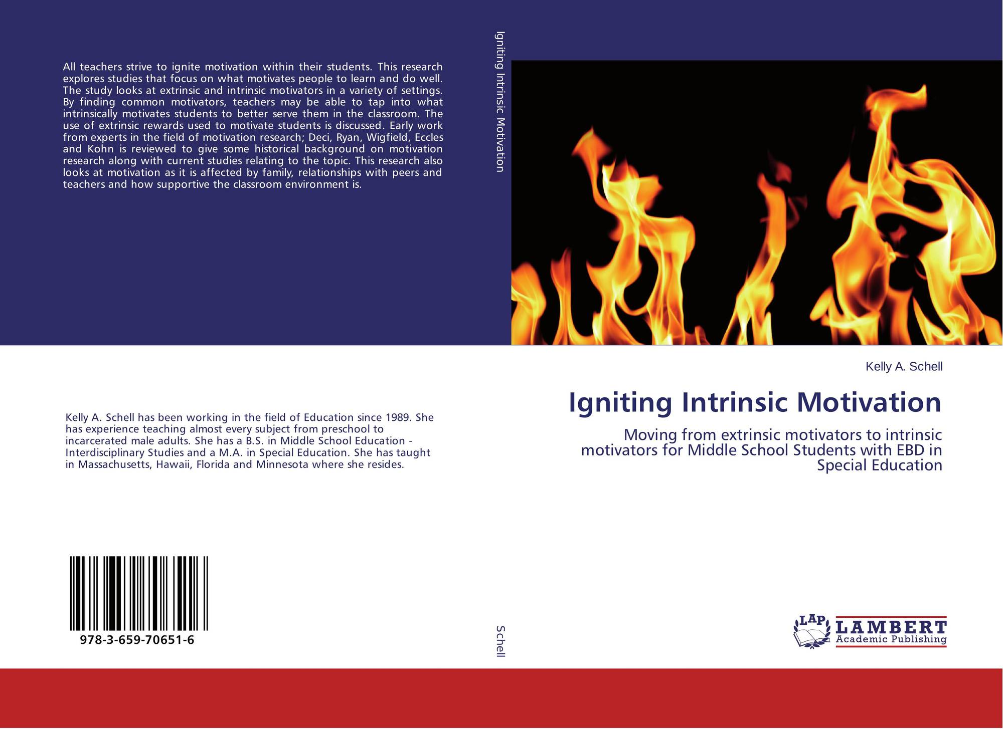 search results for motivation to become a doctor bookcover of igniting intrinsic motivation