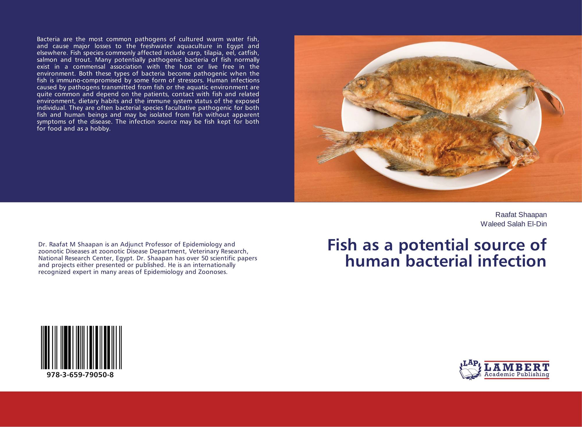 Fish as a potential source of human bacterial infection for Fish bacterial infection