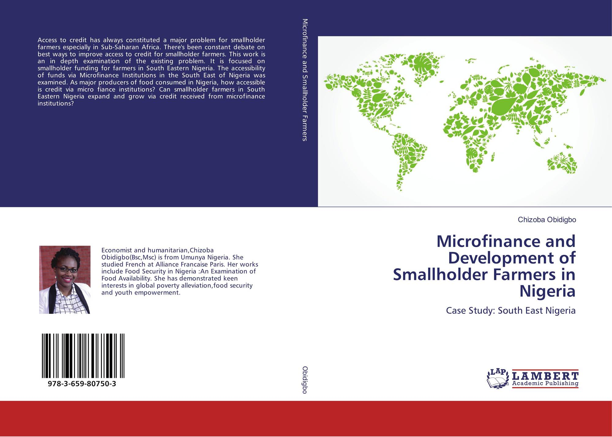 the evolution of microfinance institutions in nigeria economics essay In conclusion therefore, microfinance institutions have strong relationship with the development of rural areas in nigeria and the establishment of the institutions has positive effect on rural development and it has made it easy for the rural dwellers to.