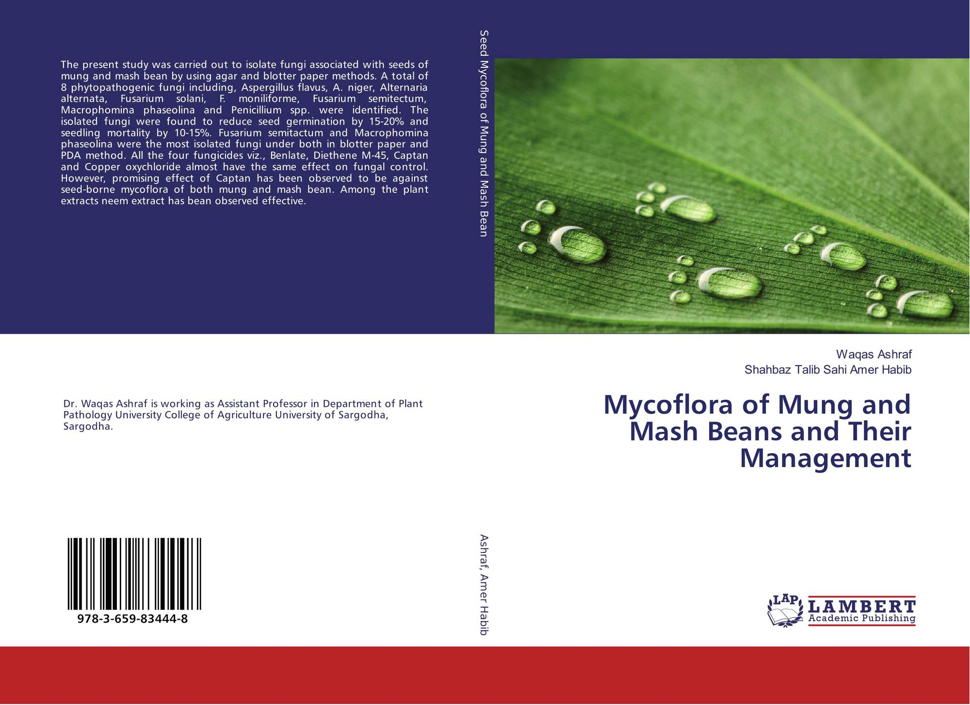 review of related literature and studies of mung beans (the effect of ph on mung beans (related): literature review on cognitive labor labor studies language literature macbeth management.