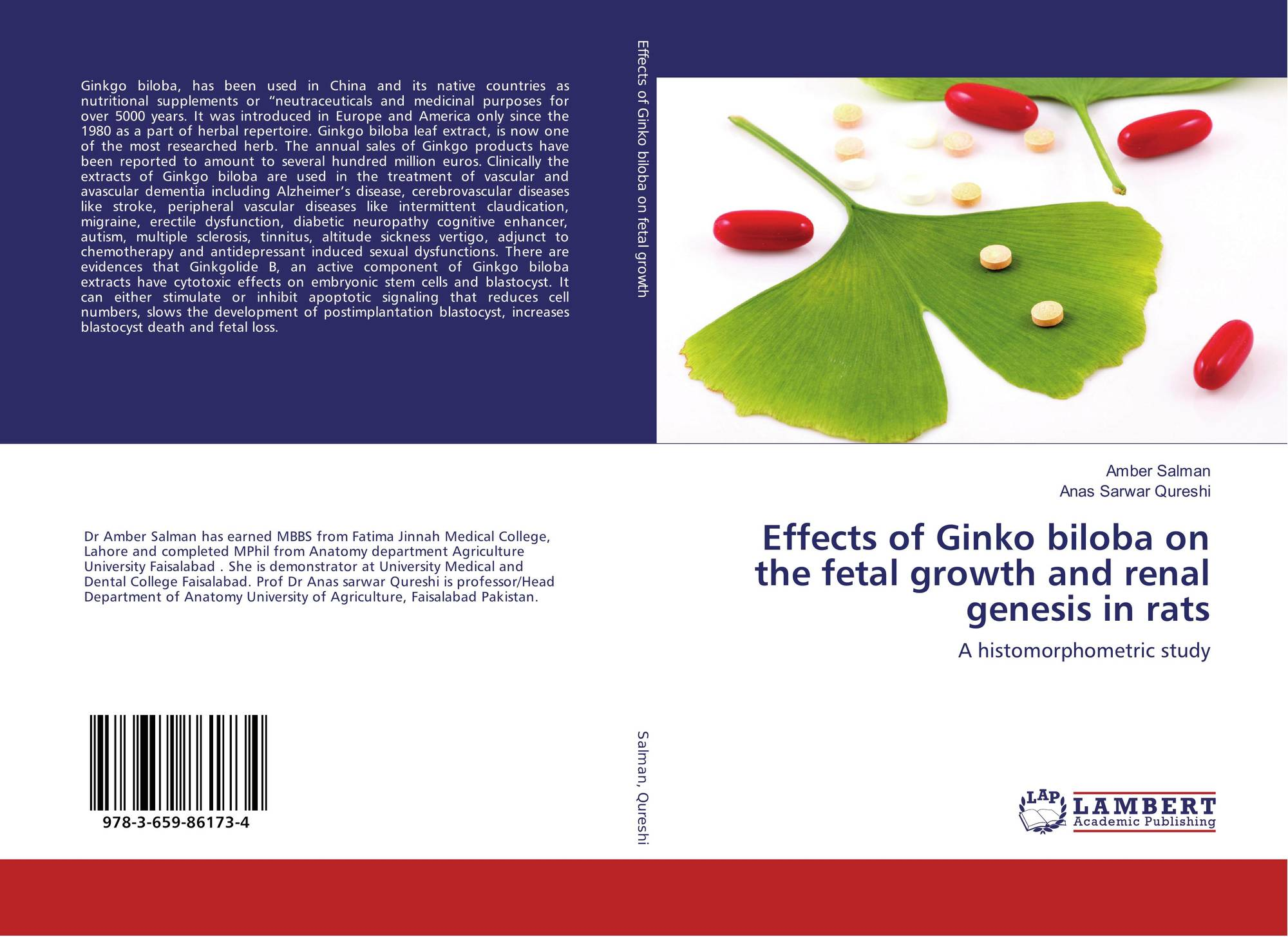 an analysis of effects of ginko biloba on a person Accumulating evidence suggests that ginkgo biloba is cardioprotective, in part   the major finding of this analysis was that g biloba had no effect on bp or pp in   the antihypertensive effects of g biloba may not be evident in elderly persons, .