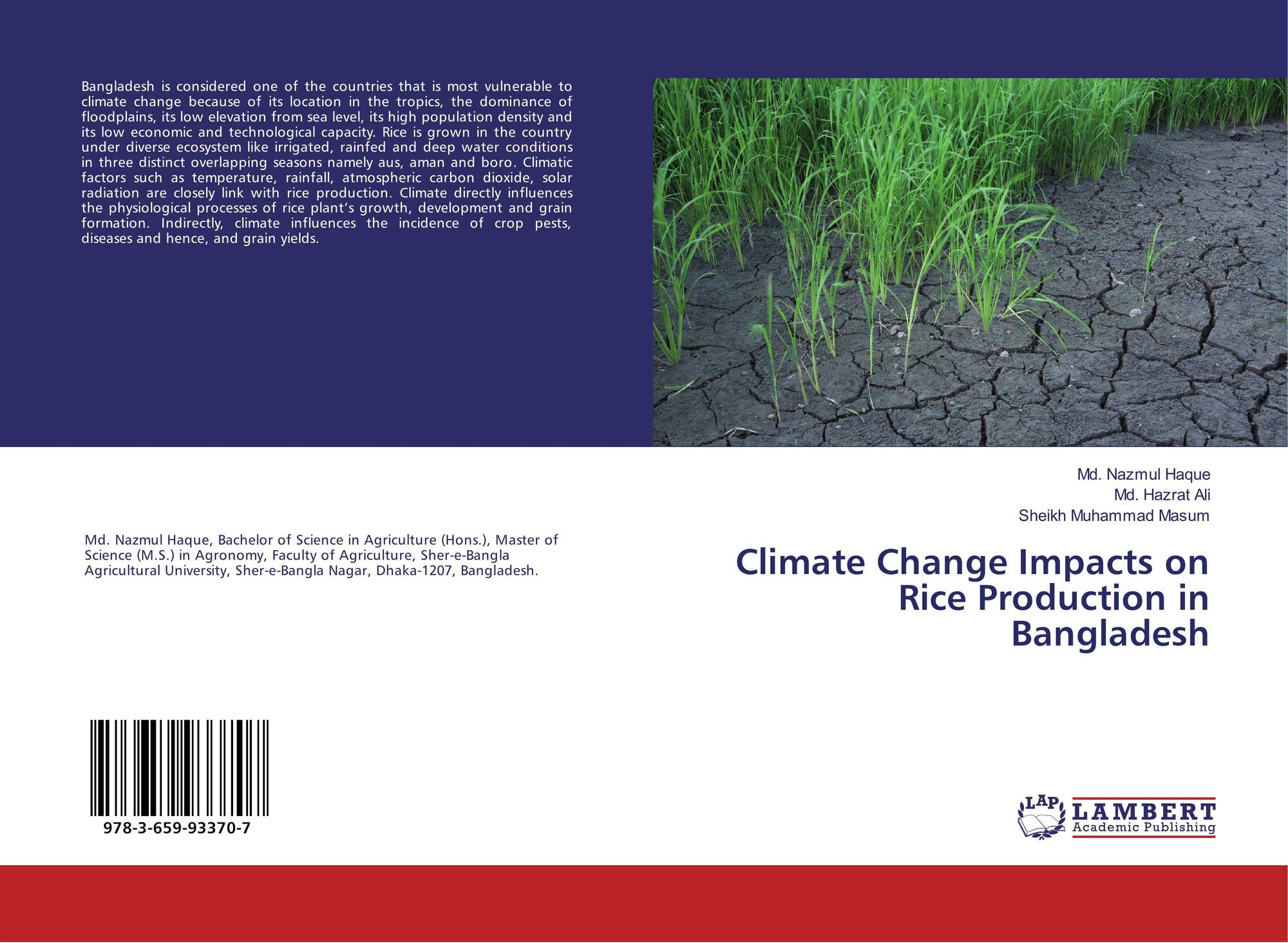 impact of salinity on rice production 287 290 426 307 274 80 337 40 87  cause & impact of salinity  investigate the impacts of salinity on rice production 2 investigate the utilization of factors.