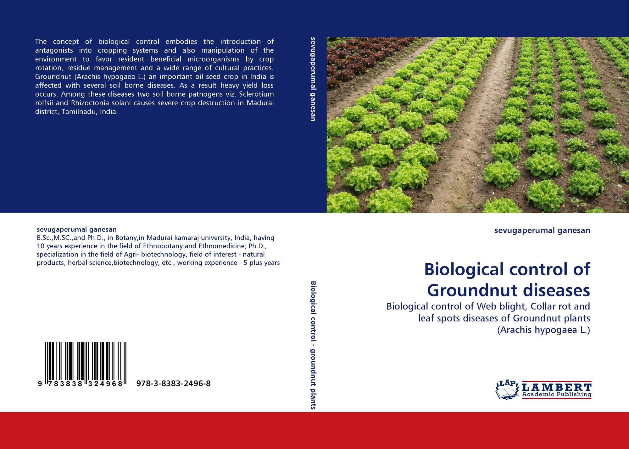 thesis on sclerotium rolfsii Thesis only search for  the antagonistic potential of the local isolates against the phytopathogenic fungi sclerotium rolfsii was investigated in dual culture,.