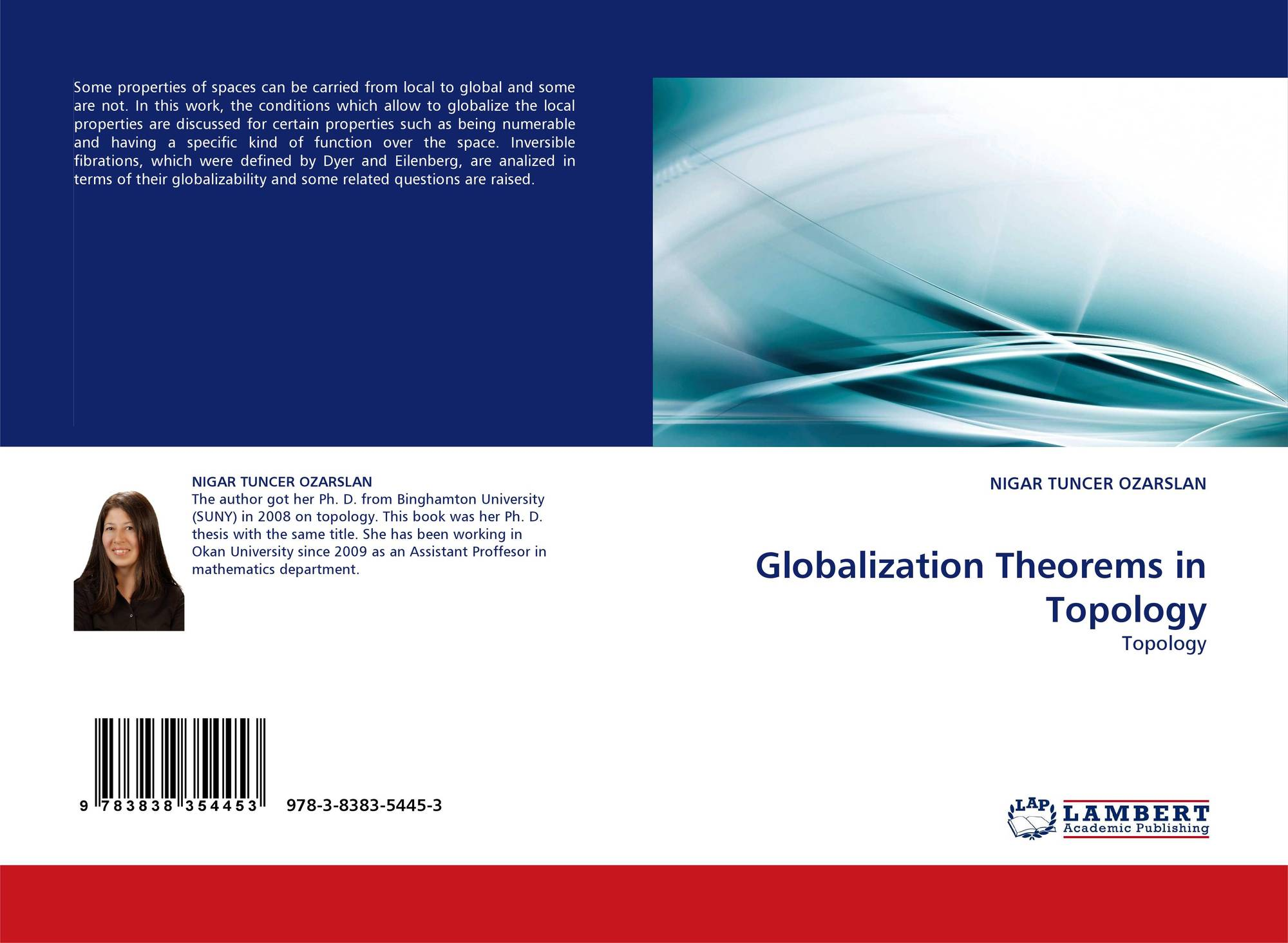 Globalization Theorems in Topology, 978-3-8383-5445-3