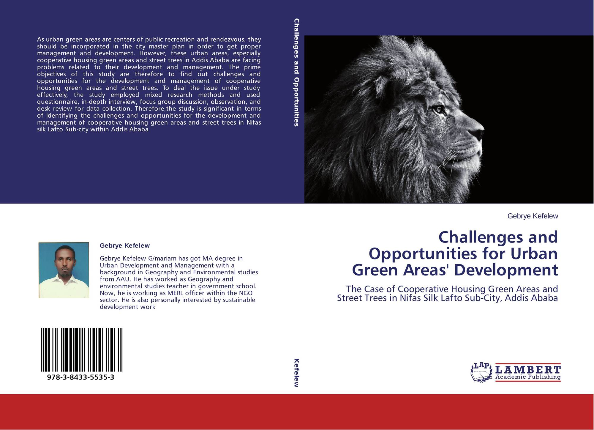 challenges and opportunities in urban area