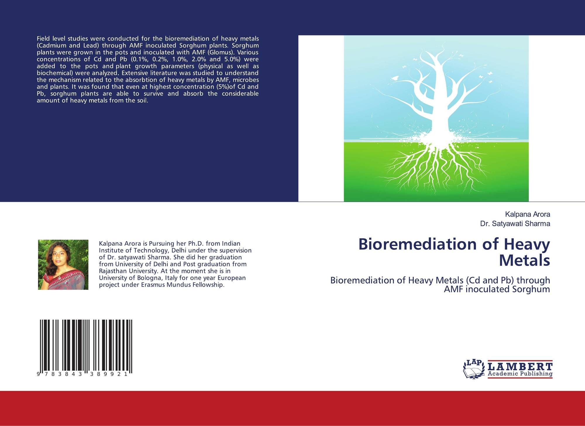 bioremediation connected with large metals thesis