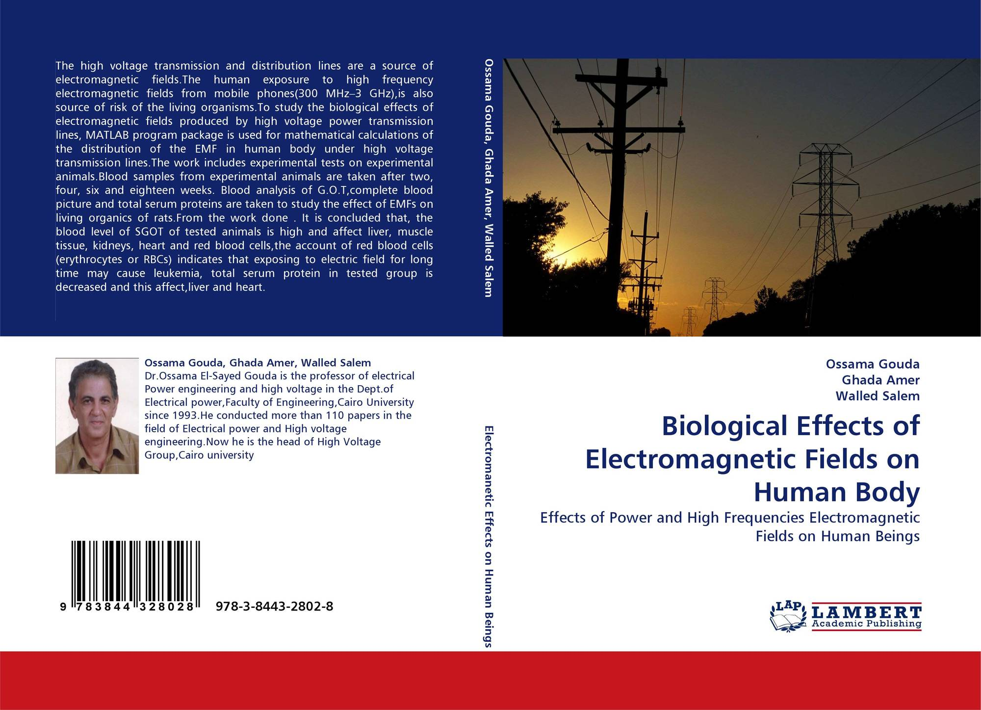 the effects of living under electromagnetic fields and power lines What are electromagnetic fields directly beneath power lines the fields are much that exposure to electromagnetic field levels in the living environment is.