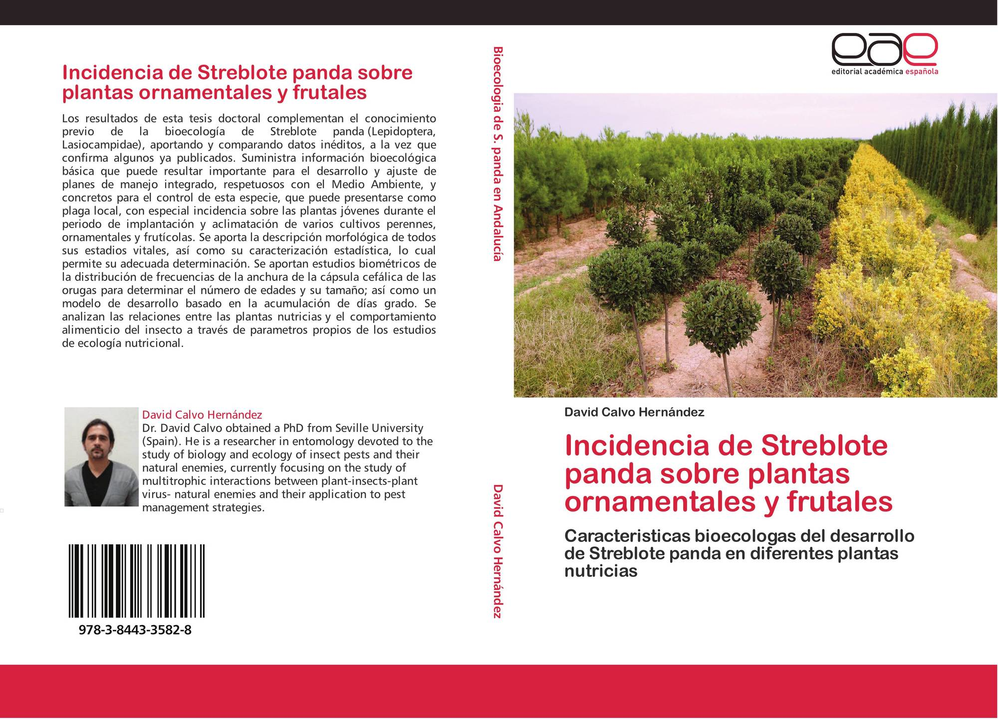 Incidencia de streblote panda sobre plantas ornamentales y for Caracteristicas de las plantas ornamentales