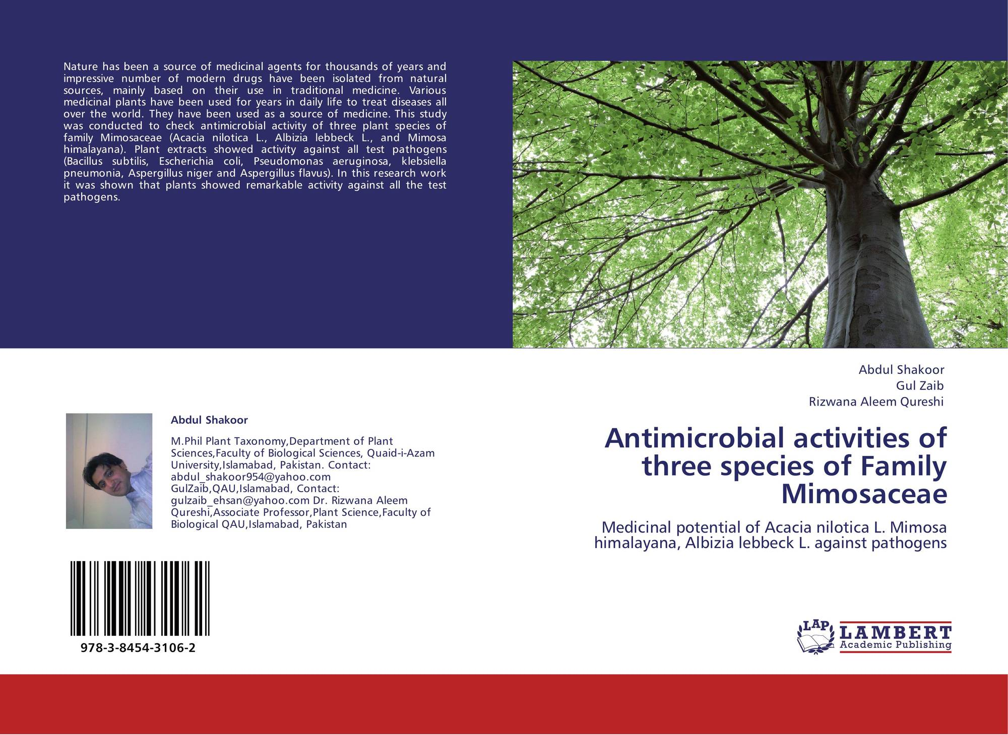research papers on antimicrobial activity of plants