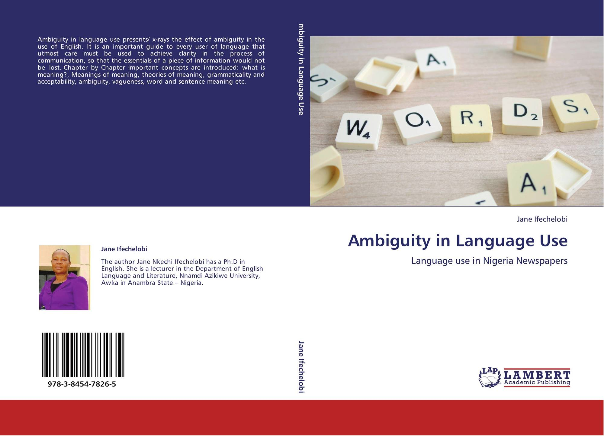 ambiguity in language essay