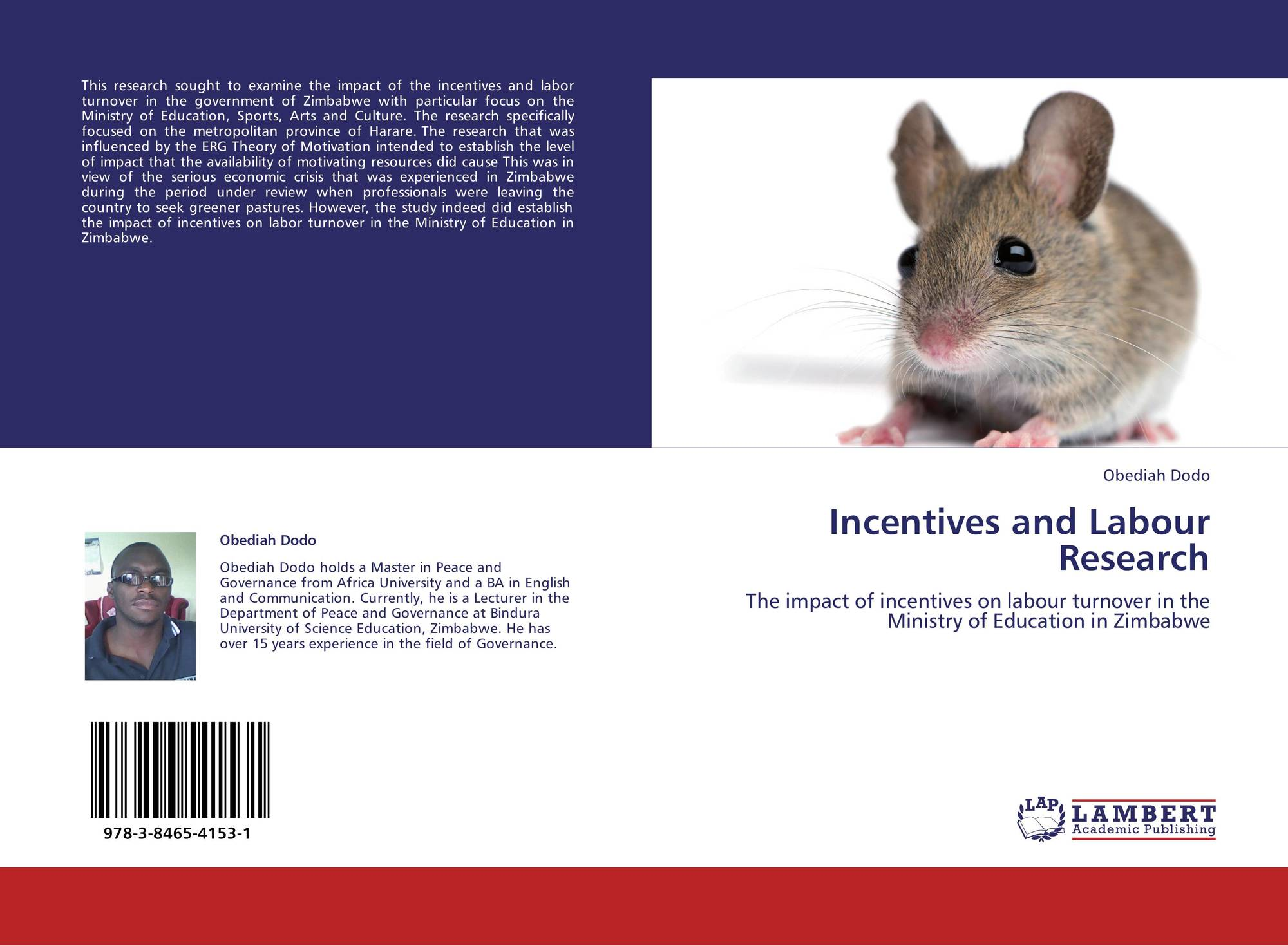 Bookcover of Incentives and Labour Research  sc 1 st  MoreBooks! & Search results for