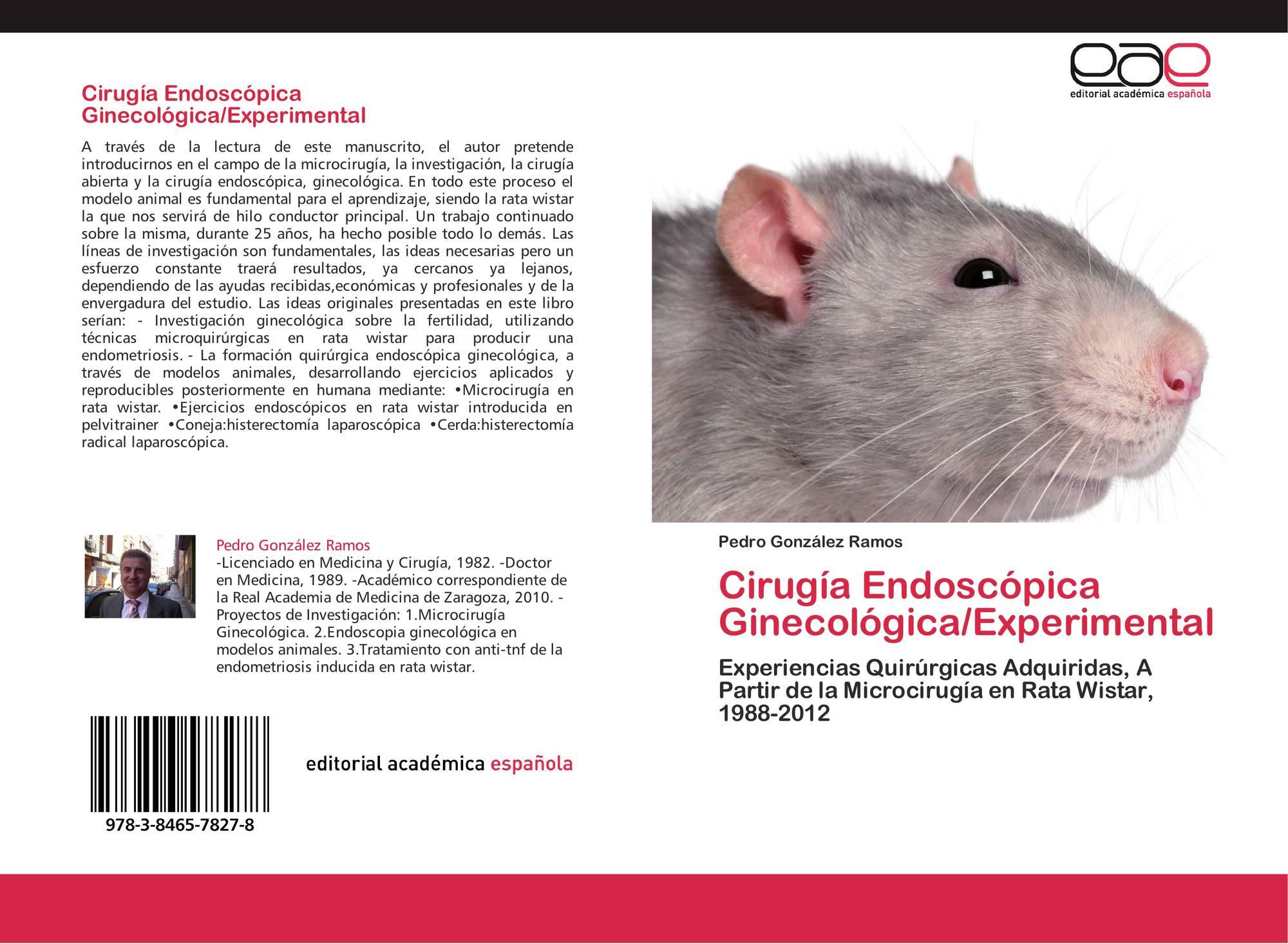 ratones con diabetes inducida por estreptozotocina de rata