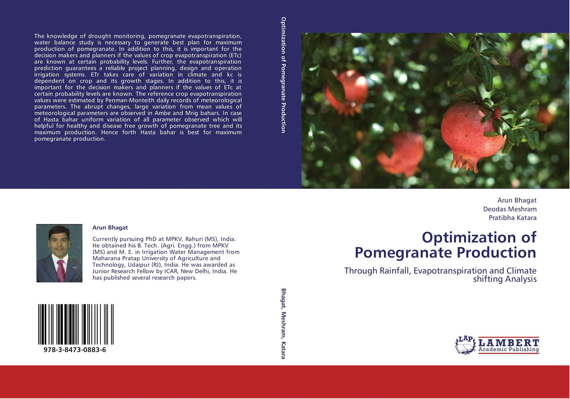 history and value of pomegranates essay A house of pomegranates is a collection of fairy tales, written by oscar wilde, that was published in 1891 as a second collection for the happy prince and other tales (1888.