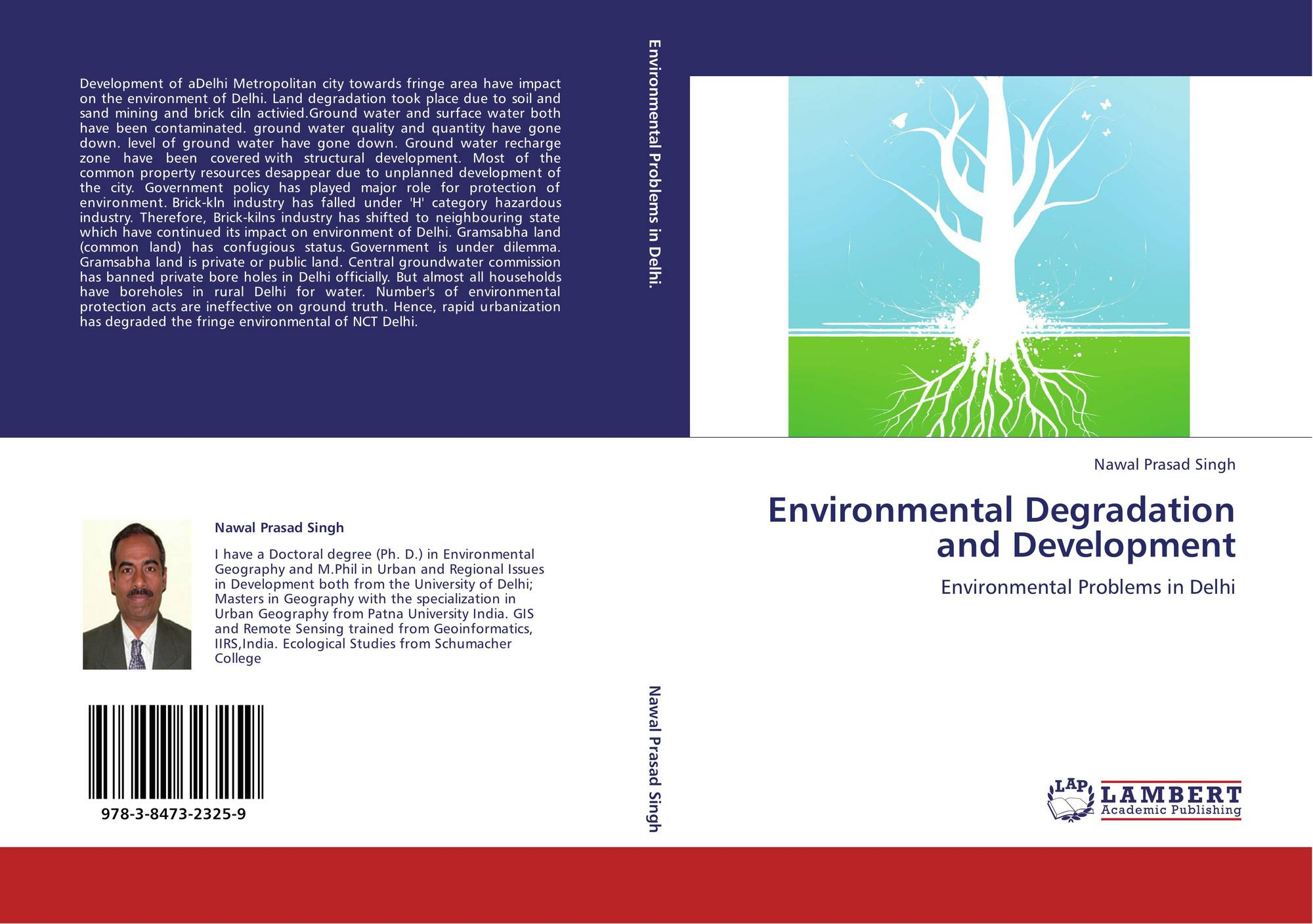 modernization and environmental degradation essays Environmental degradation and modernization essays and term papers available at echeatcom, the largest free essay community.