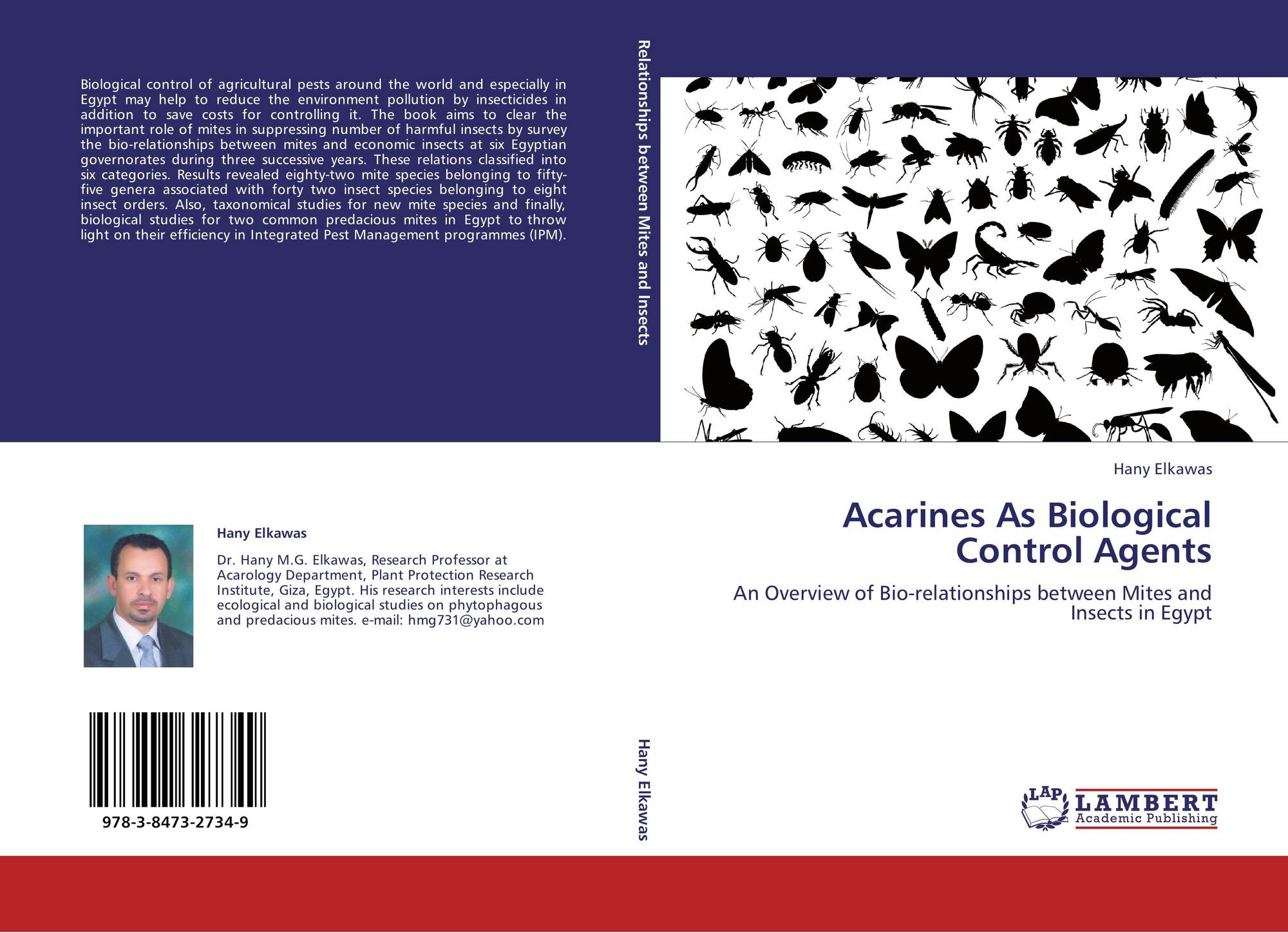 ebook Rosalind Krauss and American Philosophical Art Criticism: From Formalism to