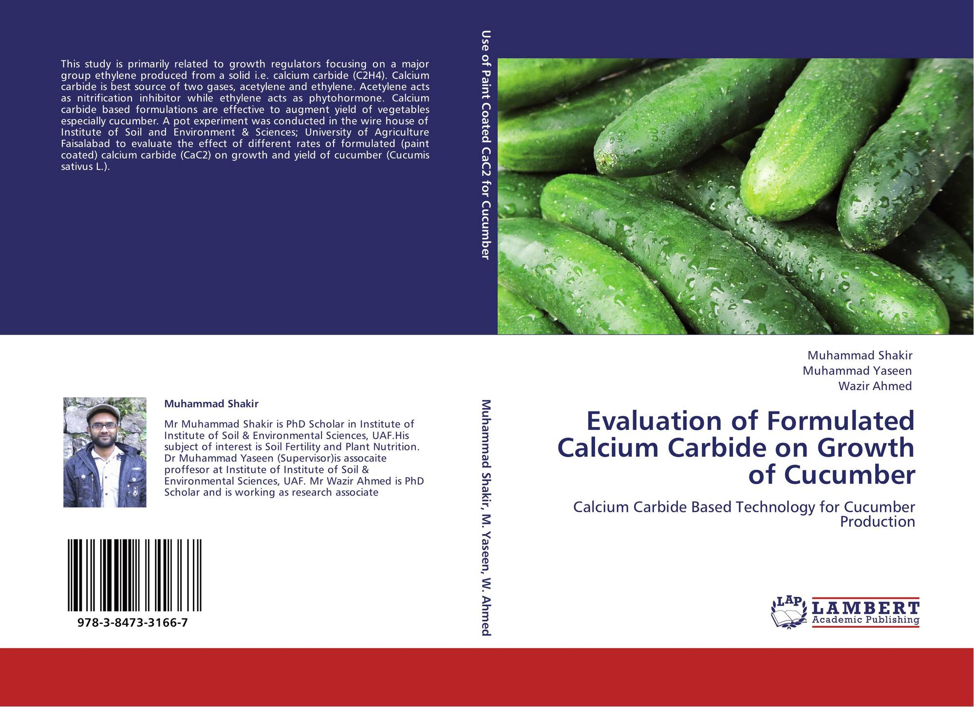 th feasibility study of cucumber as 5th floor, bahria complex ii pre-feasibility study off season vegetable farming plants of sweet pepper and 15,000 plants of cucumber.