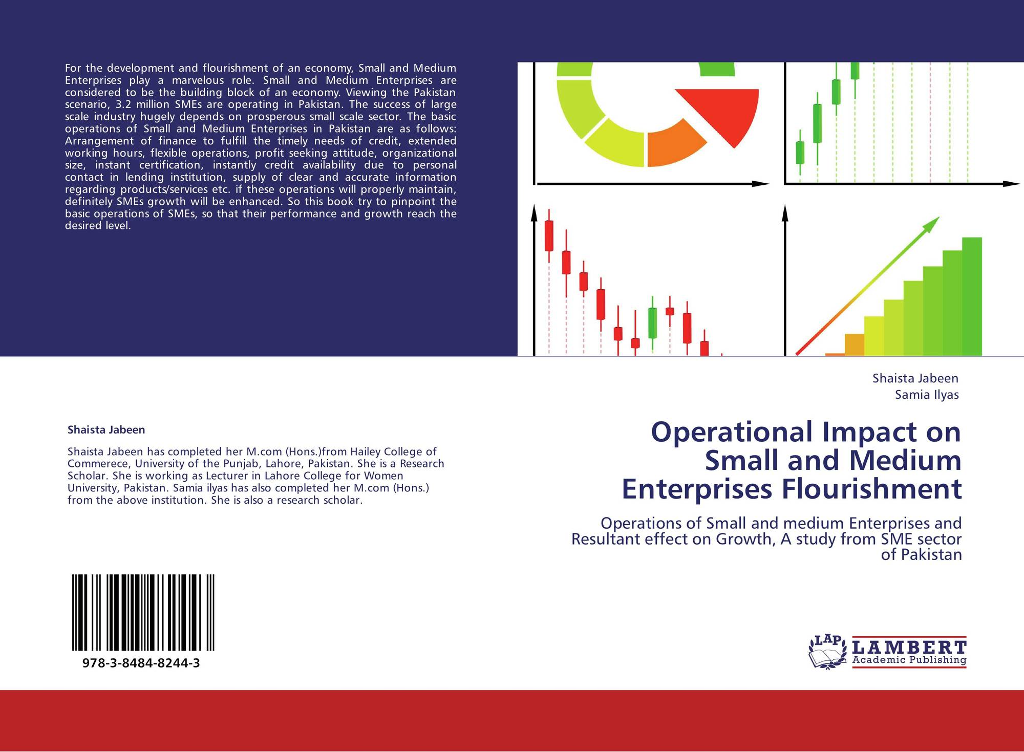 impact of taxation policy on the growth of small and medium enterprises Taxation and smes - internal  growth  entrepreneurship and small and medium-sized enterprises  and their impact on business owners' decisions to retain.